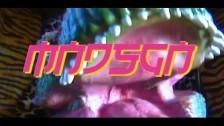 Mndsgn 'Frugality, Zen & Homewards' music video