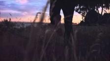 Harrison Brome 'Midnight Island' music video