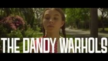 The Dandy Warhols 'Catcher in the Rye' music video