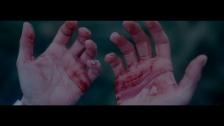 Bryan Ferry 'Loop De Li' music video