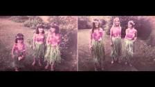 Feist 'Bittersweet Melodies' music video