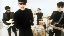 Madness 'It Must Be Love' music video