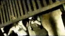 Buckcherry 'Next 2 You' music video