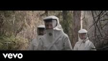 Kings Of Leon 'Reverend' music video