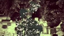 Bibio 'À tout à l'heure' music video