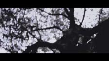 Circa Survive 'Imaginary Enemy' music video