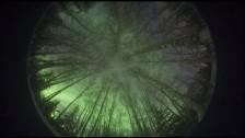 BT 'Skylarking' music video