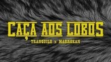 Tranquilo 'Caça aos Lobos' music video