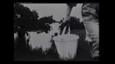 XTC 'Love on a Farm Boy's Wages' music video