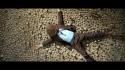 Ben Fields 'Extraordinary Light' Music Video