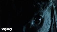 Don Broco 'Nerve' music video