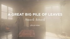 A Great Big Pile Of Leaves 'Snack Attack' music video