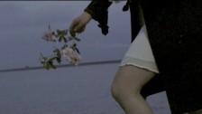 School Dance 'Field' music video