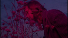 Jaakko Eino Kalevi 'People in the Centre of the City' music video