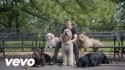 Timeflies 'Worse Things Than Love' Music Video