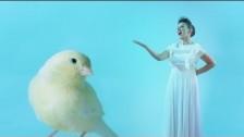 Meg 'Estate' music video