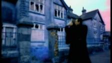 Suede 'Wild Ones' music video