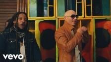 Pitbull 'Options' music video