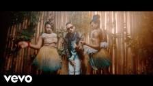 Phyno 'Nnunu' music video