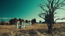 The Black Keys 'Weight Of Love' music video