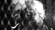 Kinky Love 'Ten Seconds' music video