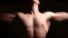 Wife 'Heart Is A Far Light' music video