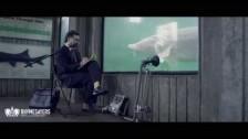 The Uncluded 'The Aquarium' music video