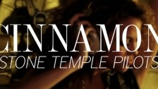 Stone Temple Pilots 'Cinnamon' music video
