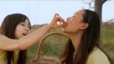 Thirteen Senses 'Follow Me' music video