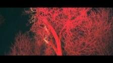Niki & The Dove 'Tomorrow' music video