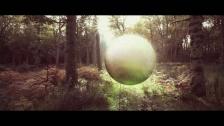 Mirel Wagner 'Joe' music video