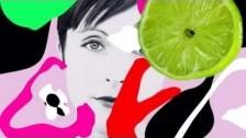 Poliça 'Lime Habit' music video