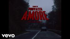 The Zen Circus 'Come se provassi amore' music video