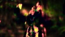 CausaliDox 'Clint' music video