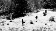 Feist 'Graveyard' music video