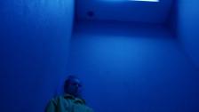 Stonefield 'Dead Alive' music video