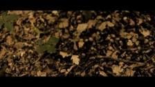 Big Scary 'Autumn' music video