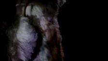 Jinka 'Flesh To White To Black To Flesh' music video