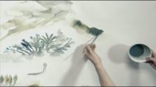 Le Luci Della Centrale Elettrica 'Chakra' music video