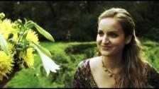 Roger Cicero 'Die Liste' music video