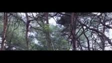 New Found Land 'Mirror' music video