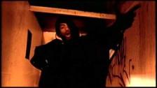 Method Man 'Release Yo' Delf' music video