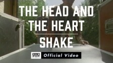The Head And The Heart 'Shake' music video