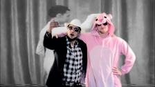 Psilodump 'Digijam Dub' music video