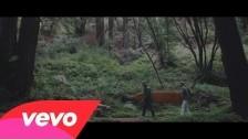 Cayucas 'Moony Eyed Walrus' music video