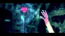 Klaypex 'Lights' music video
