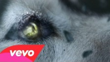 David Guetta 'She Wolf (Falling to Pieces)' music video