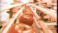 Shonen Knife 'Tomato Head' music video