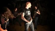 Terrathorn 'No Pets Allowed' music video