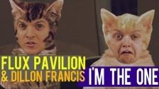 Flux Pavilion 'I'm The One' music video
